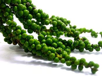 vertus the vert